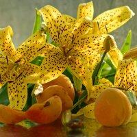 Жёлтые лилии и абрикосы :: galina tihonova