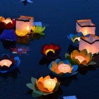 Фестиваль водных фонариков :: Savayr
