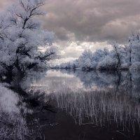 Настроение природы :: Alexander Varykhanov