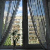 У окна :: nika555nika Ирина