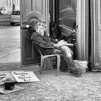 Бездомный :: Ольга Левченко