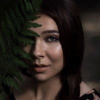 ... :: Elena Peshkun