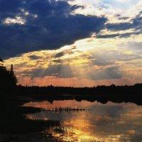 Летний вечер :: Вера Андреева