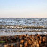 Море :: Elena S.