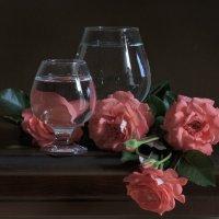 Розы :: Алина