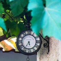 еще идут старинные часы... :: seseg Seseg