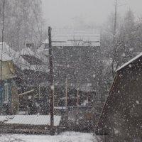 Зима :: Виктор Тарасюк
