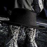 Все дело в шляпе :: Людмила Синицына