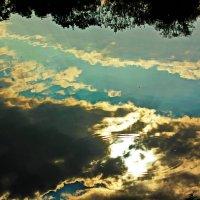отражение в воде :: Алёна Крайко