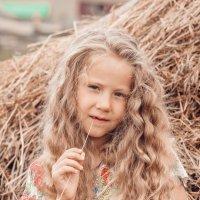 Девочка на сене :: demvadim