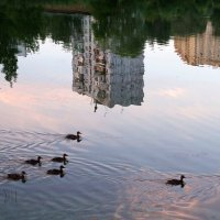Вечер на реке :: lady-viola2014 -