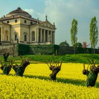 Ротонда в г.Виченце, Италия. :: Александр Белоглазов