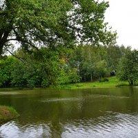 Городской пруд после дождя :: Милешкин Владимир Алексеевич
