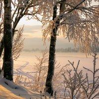 На солнце :: Владимир Миронов