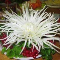 Хризантема из ... редьки :: татьяна