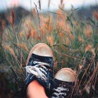 отдых в поле :: Тася Тыжфотографиня
