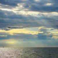 лучи солнца.. :: Марина