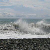 Ах море, море 2 :: Елена Шишлянникова