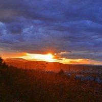 Свет уходящего солнца :: galina tihonova