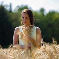 Девушка с букетом колосков :: Юлия