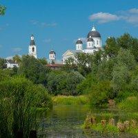 Река Тёша :: Роман Царев