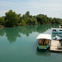 Зеленая река :: Григорий