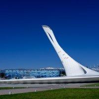 Чаша Олимпийского Огня :: Puma V.