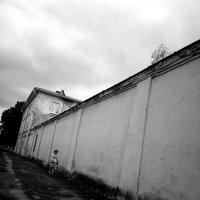Стена :: Николай Филоненко
