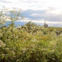 Вид на часовню Спаса Нерукотворного из деревни Ямка :: Avada Kedavra!