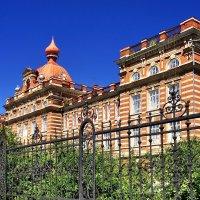 Женское Епархиальное училище в Елабуге (1903 г.) :: Денис Кораблёв