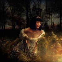 в поисках волшебства.... :: Светлана Мизик