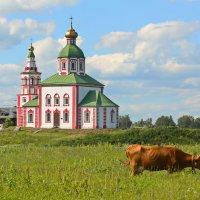 Сельская жизнь :: Александр Сивкин