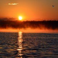 Плыл над озером туман.... :: Геннадий Ячменев