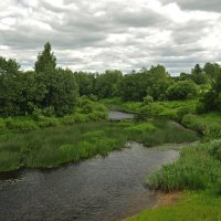 река Мосяга :: Злата Красовская