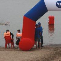 Последний участник заплыва... :: Владилен Панченко