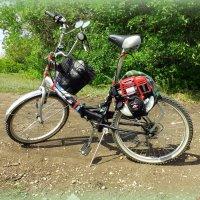 Средство передвижения с мотором от бензопилы)) :: Андрей Заломленков