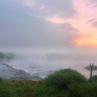 Вдыхаем утренний туман :: Павлова Татьяна Павлова