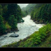 Две реки... :: алексей афанасьев