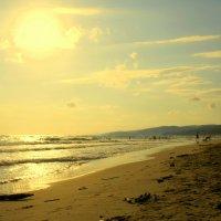 Черноморское побережье :: Дарья :)