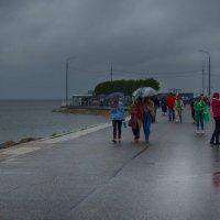 На Финском заливе- дождливо. :: Лара ***