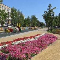 Новый бульвар :: Татьяна Смоляниченко