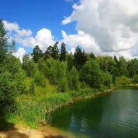Берег озера :: Маргарита Батырева