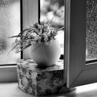 дождь :: Светлана Прилуцких