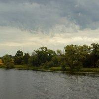 Придеснянские пейзажи июля ... :: Игорь Малахов