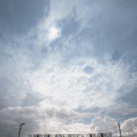 после дождя :: Роман Маканчук