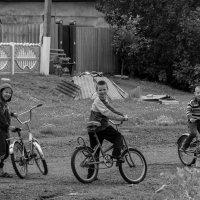 Сельская банда :: Artem Zelenyuk