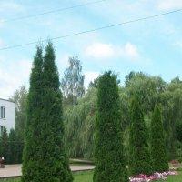 Зелёная геометрия :: Галина Бобкина