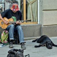 Городская мелодия. :: john dow