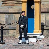 Королевский гвардеец :: Евгений Никифоров