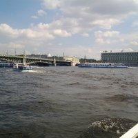 Час пик на реке Неве. :: Жанна Викторовна
